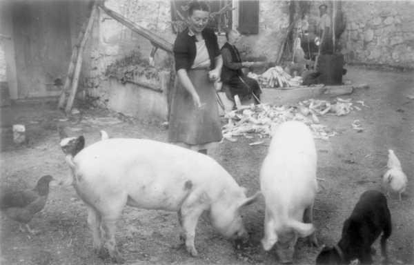 Marie-Louise Constant et son bestiaire