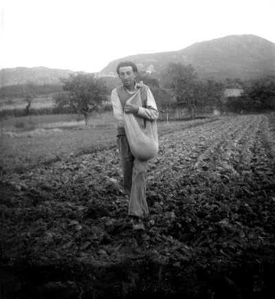 Robert Ribaud au moment des semis