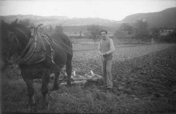 Les Salles-sur-Verdon, Robert Ribaud au moment des labours