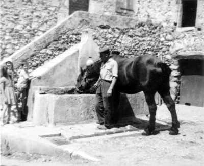 Fontaine de la calade, Elie Bourjac et son cheval, 1964
